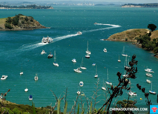 ve may bay di auckland