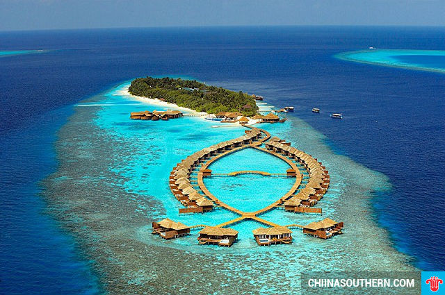 ve may bay gia re di maldives