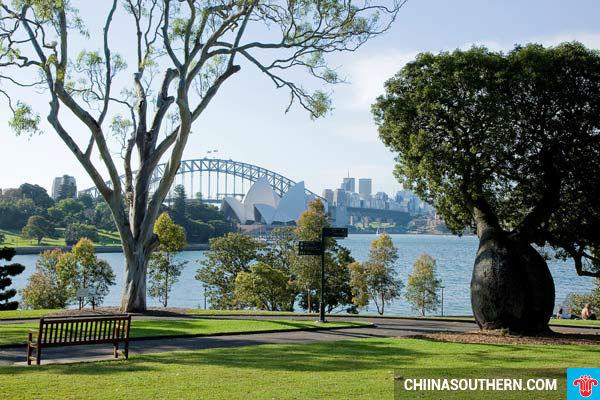 ve may bay di Sydney