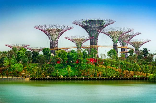 mua tour du lich singapore gia re