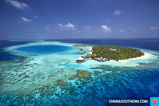 ve may bay di maldives