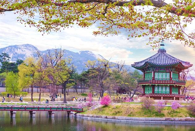 Những cảnh đẹp vạn người mê tại đất nước Hàn Quốc